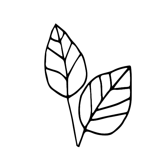 double-leaf-icon