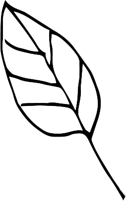 small-leaf-icon