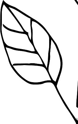 small-leaf-icon